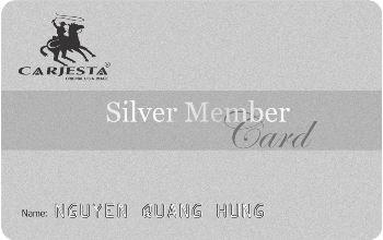 CARJESTA Silver anh(2)